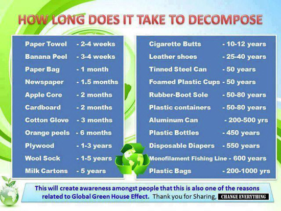 Decomposition rates of common materials
