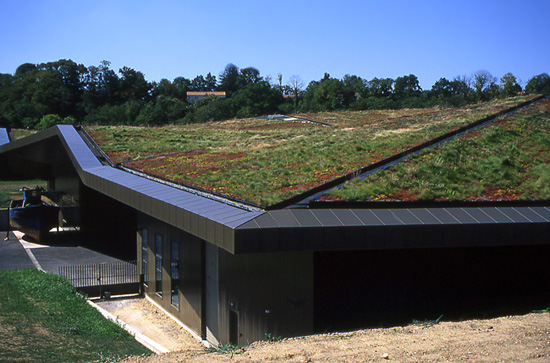 A green roof; photo courtesy SiGarb